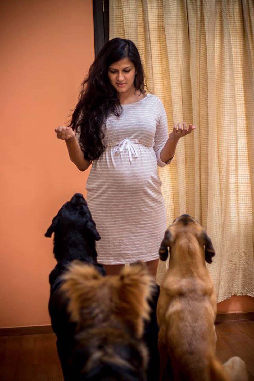 Perros y mujer embarazada