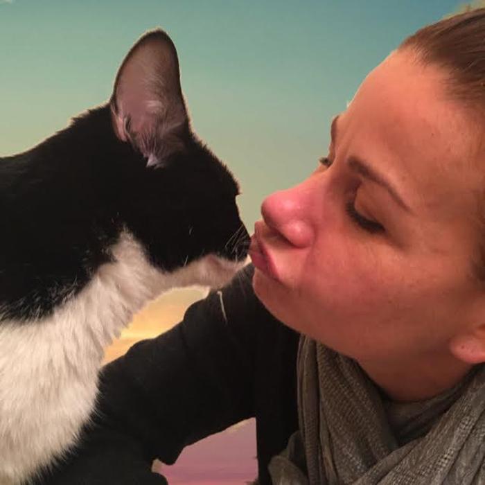 Valentine es un gato muy adorable