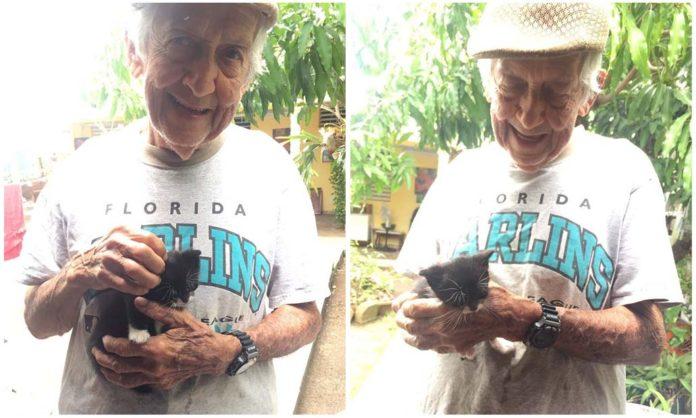 Abuelo cuidó a unos gatos en secreto