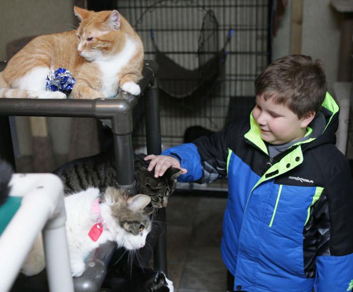 Bryce ama a los gatos