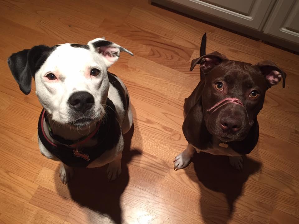 Caitlyn y su hermano adoptivo