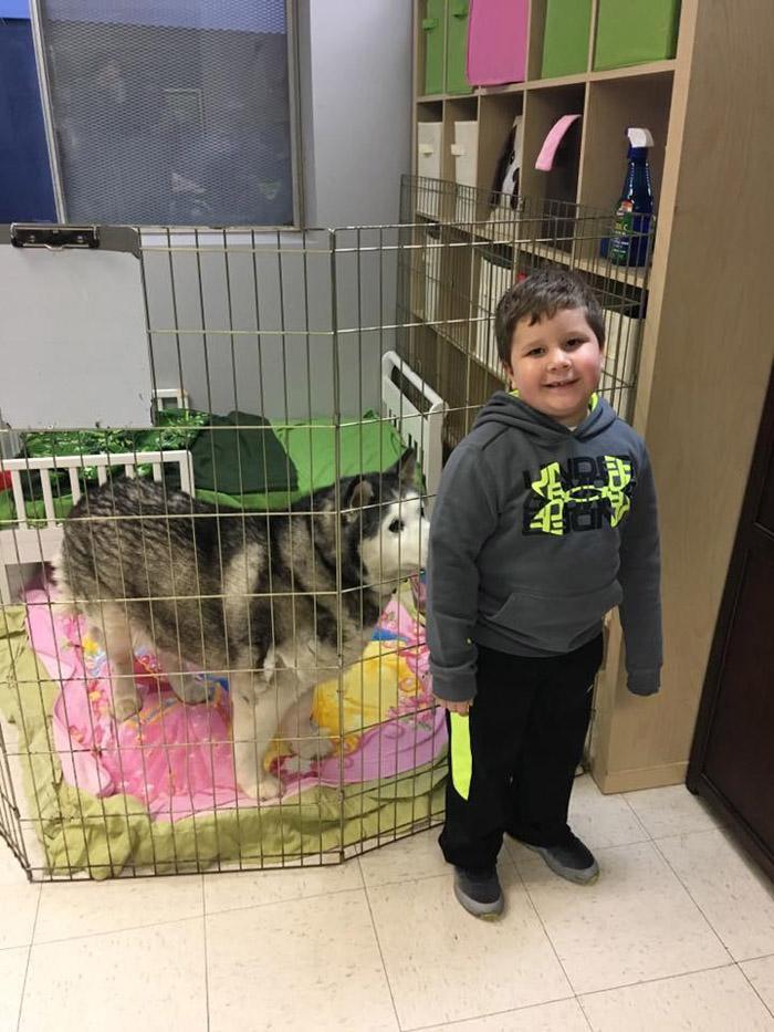 Este pequeño es muy feliz cuando está rodeado de animales