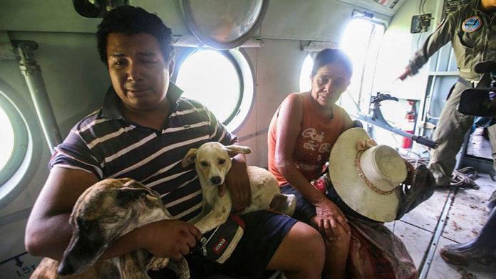 Hombre llora cuando fue rescatado y no dejó a sus perros