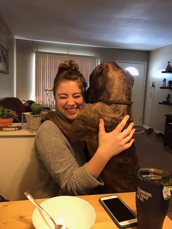 Kylo ama los abrazos de Sweers