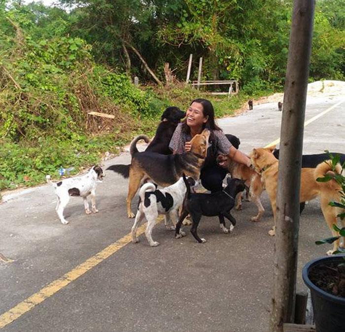 Mujer alimenta a perro sin hogar