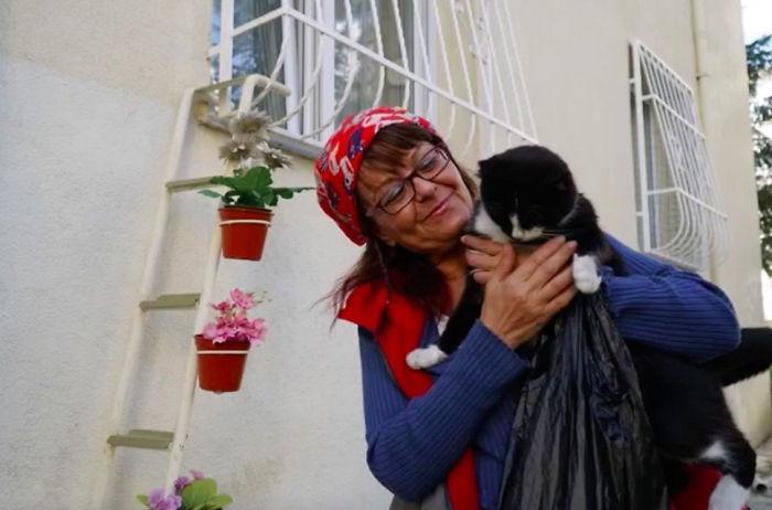 Mujer construye una escalera para gatos sin hogar