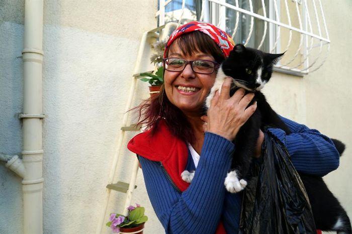 Mujer construyó una escalerilla para los gatos