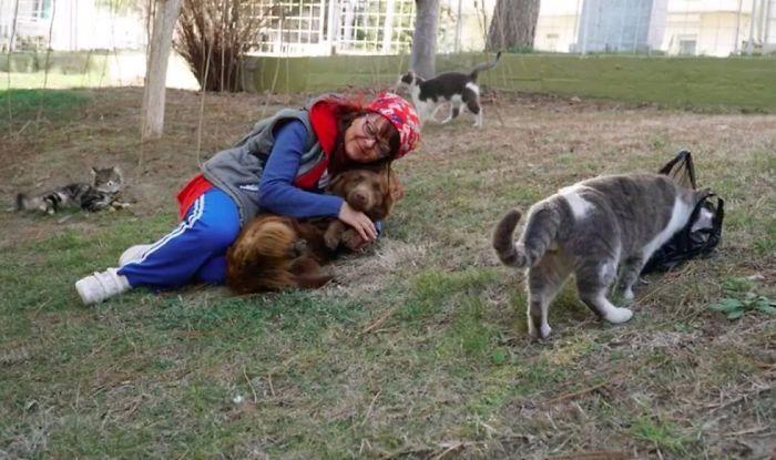 Mujer cuida a perros y gatos