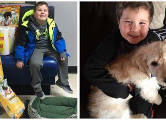 Niño con un tumor cerebral ayuda a los animales
