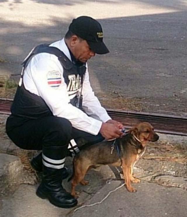 Oficial rescató a un perro