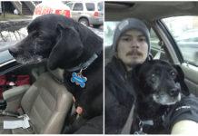 Repartidor de pizza ayudó a un perro extraviado