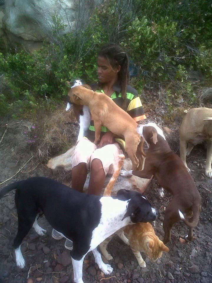 Quando ho visto tutti quei cani mi sono subito domandata perch li teneva l con tutte le - Cani che non vogliono fare il bagno ...