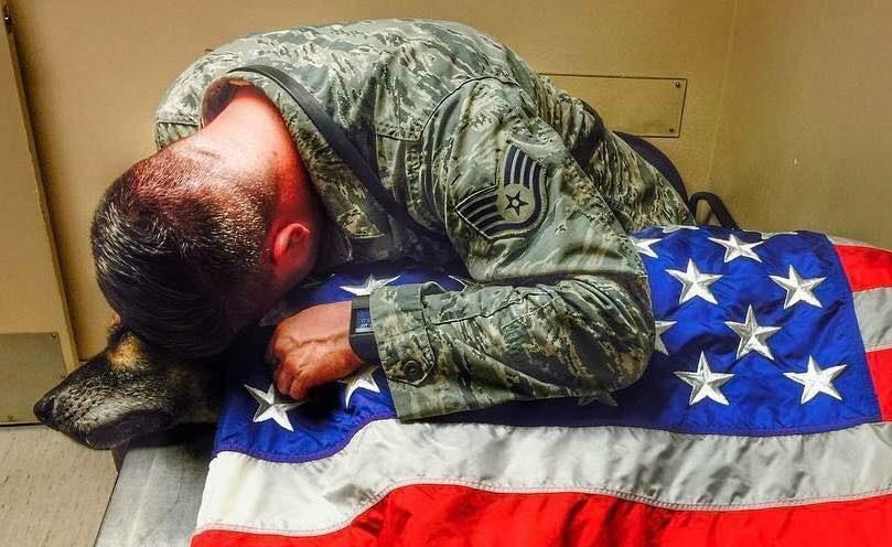 Soldado al lado de su perro moribundo