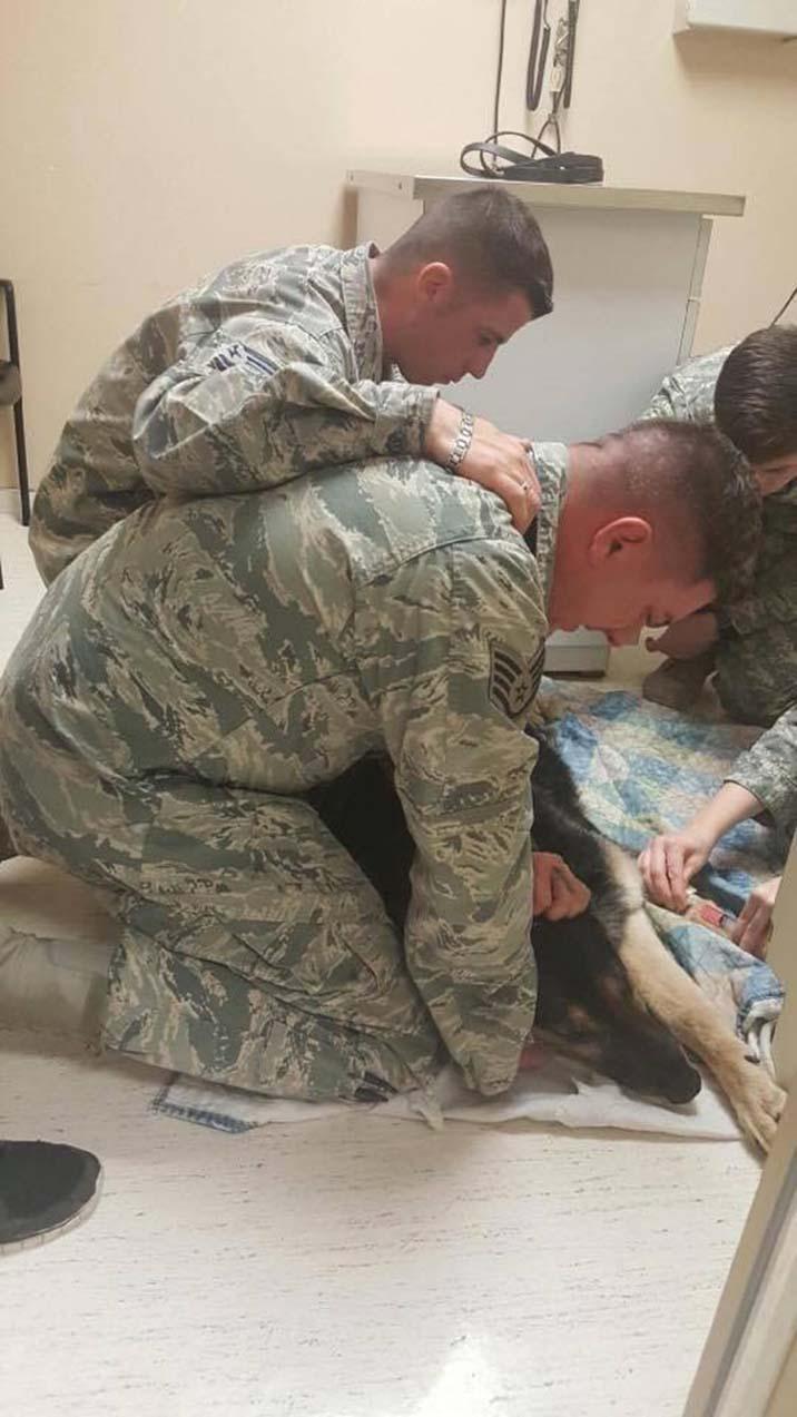 Soldado se despide de su perro