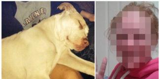 pitbull salva a un niño que intentó ahogar su madre