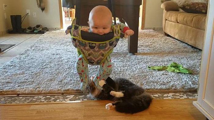 Calvin y su gato