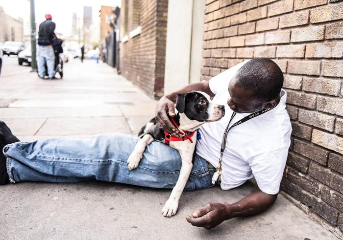 Perro y hombre sin hogar