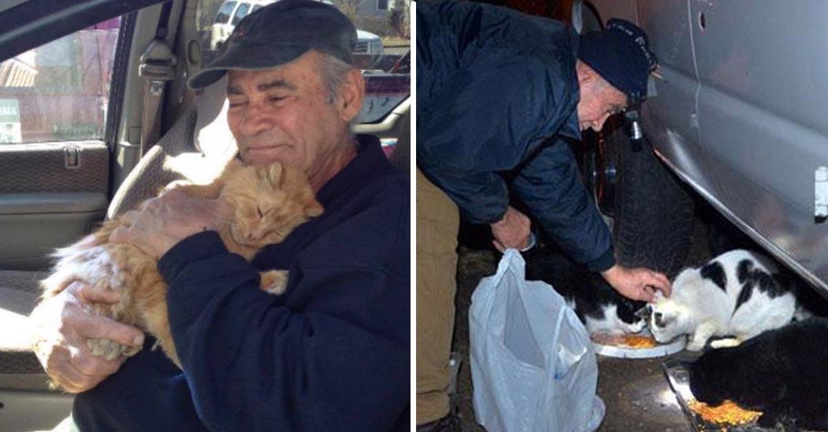 Este bondadoso hombre lleva más de 20 años cuidando gatos sin hogar