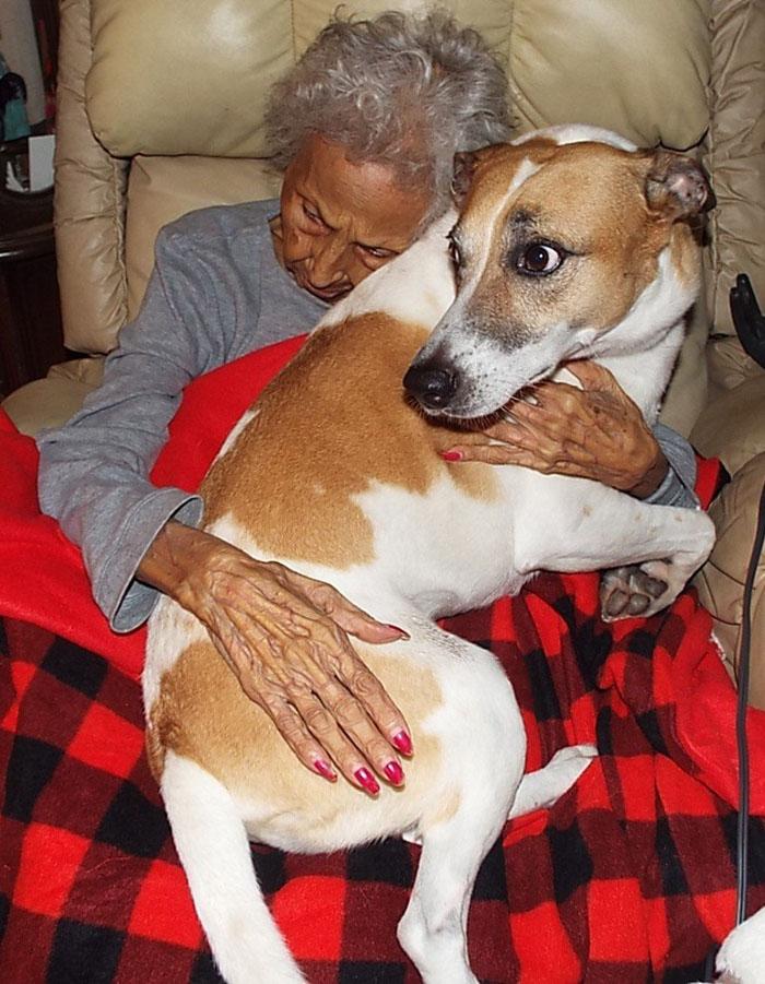 Gloria Gutierrez quiere que sus perros estén bien