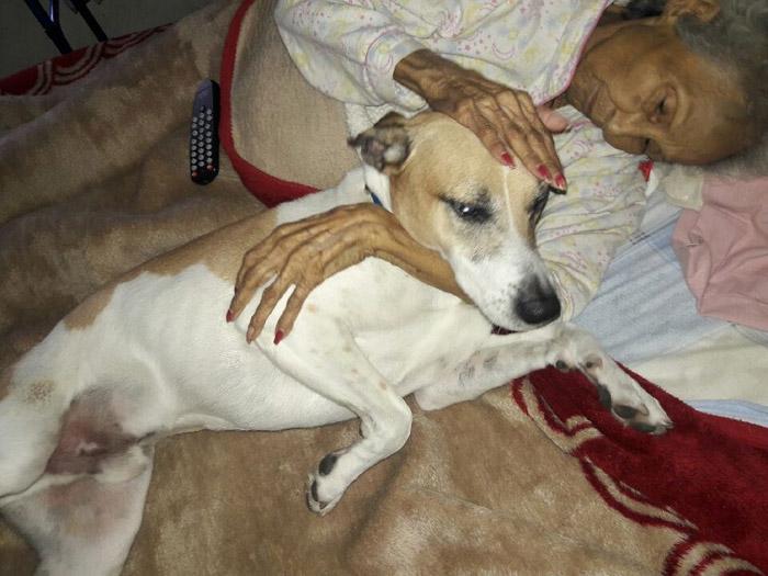 Gloria Gutierrez y uno de sus perros