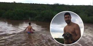 Hombre arriesgó su vida para salvar a un perro