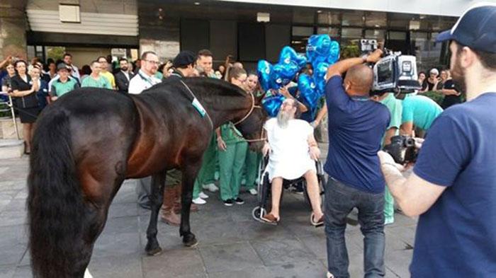 Hombre mejora cuando su caballo lo visita