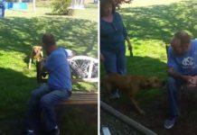 Perro se reencuentra con su padre adoptivo y no puede contener la alegría