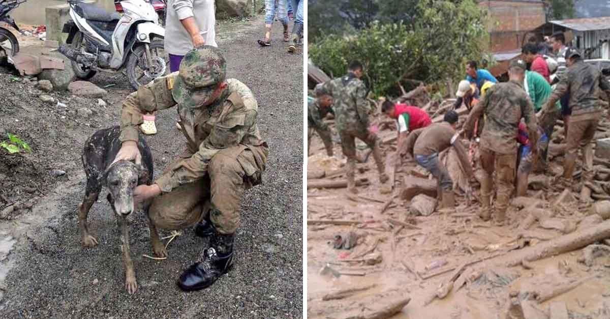 Rescatan animales tras una terrible avalancha en Mocoa, Putumayo