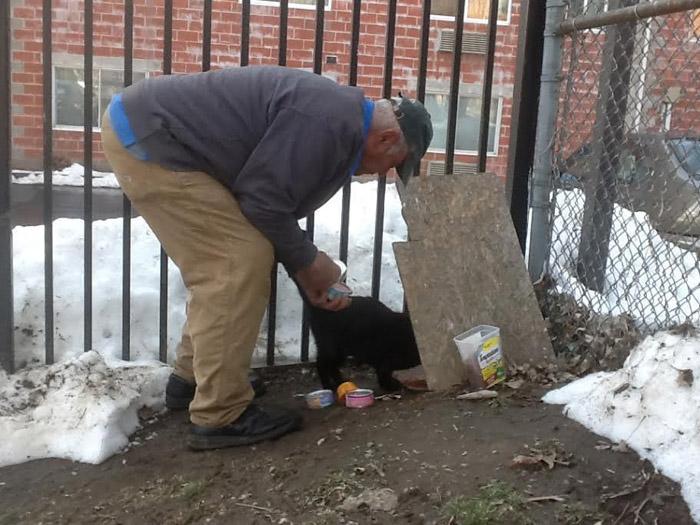 Willie Ortiz alimenta a los gatos sin hogar