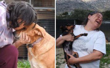 Bondadosa mujer ha salvado y transformado la vida de cientos de perros