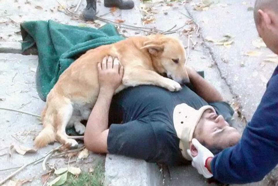 Hombre sufrió un accidente y su perro no dejó de abrazarlo