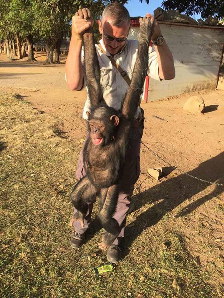 Hombre y chimpancé