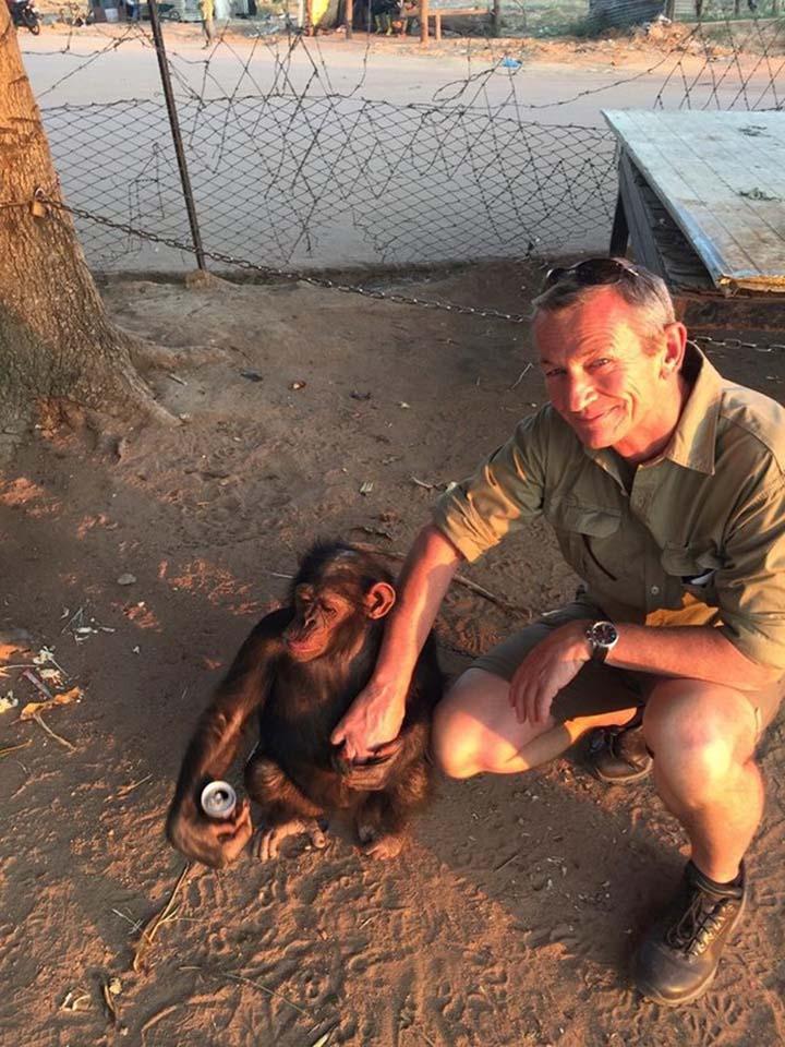 Jonh rescata a chimpancé