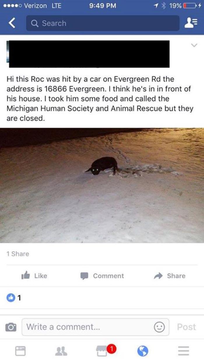 KR yacía moribundo sobre la nieve