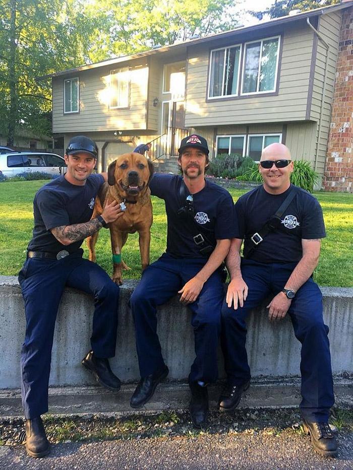 Los bomberos y Sampson