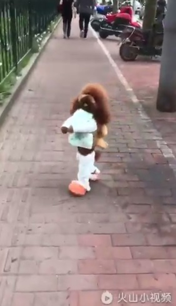 Perros que caminan en dos patas son maltratados