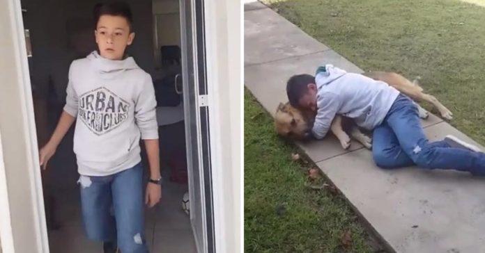 Chico rompe en llanto al reunirse de nuevo con su perro extraviado