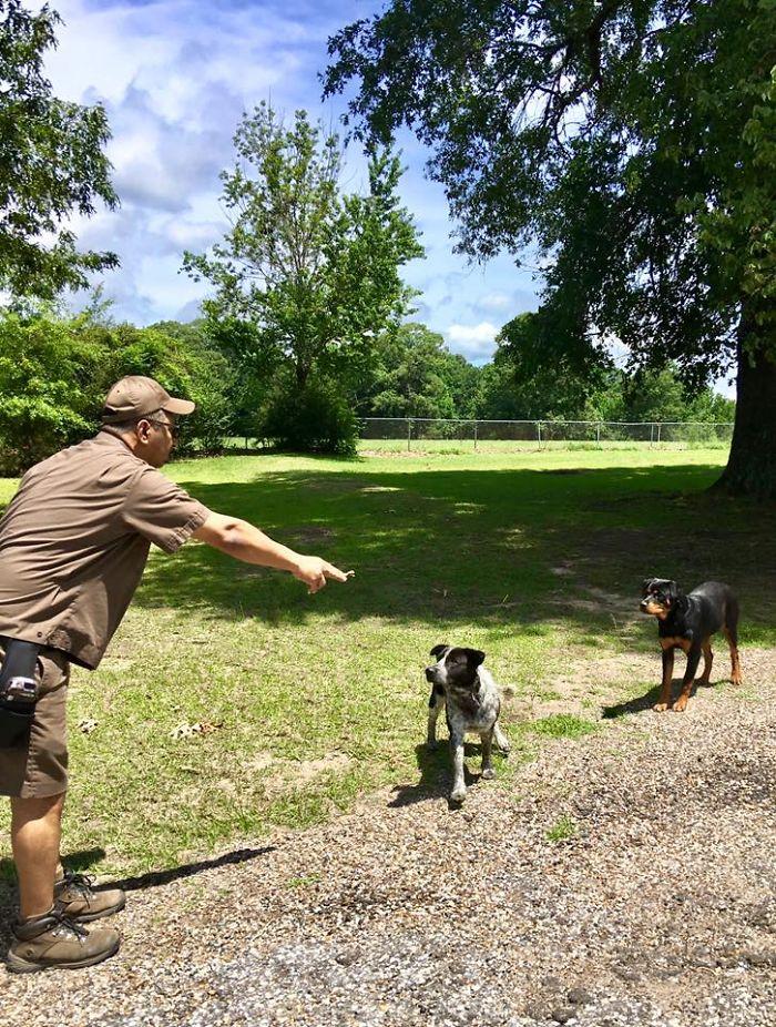 Conductor de UPS se toma selfies con perros