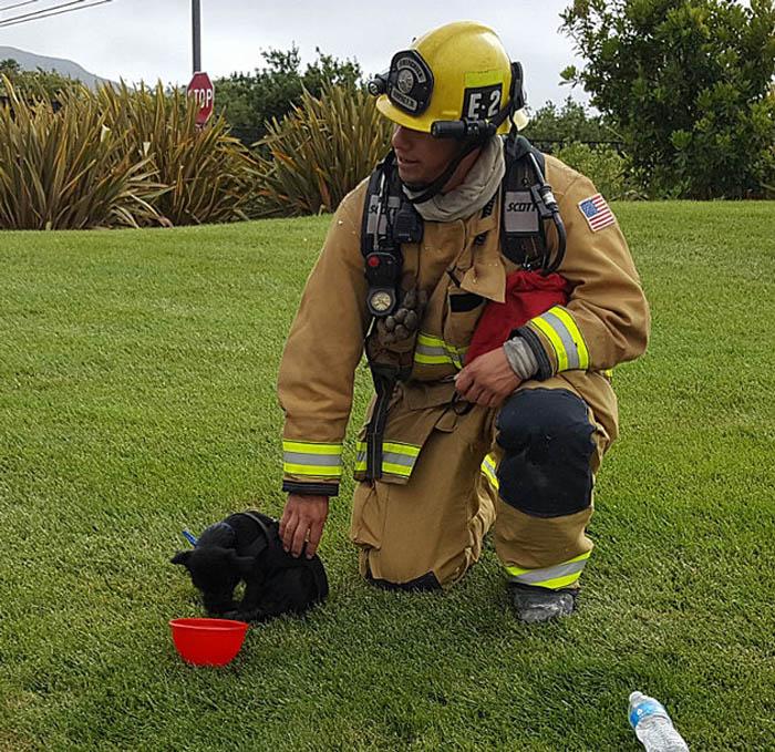 Los bomberos le brindaron agua