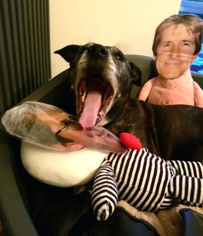 Millie y su juguete de papá