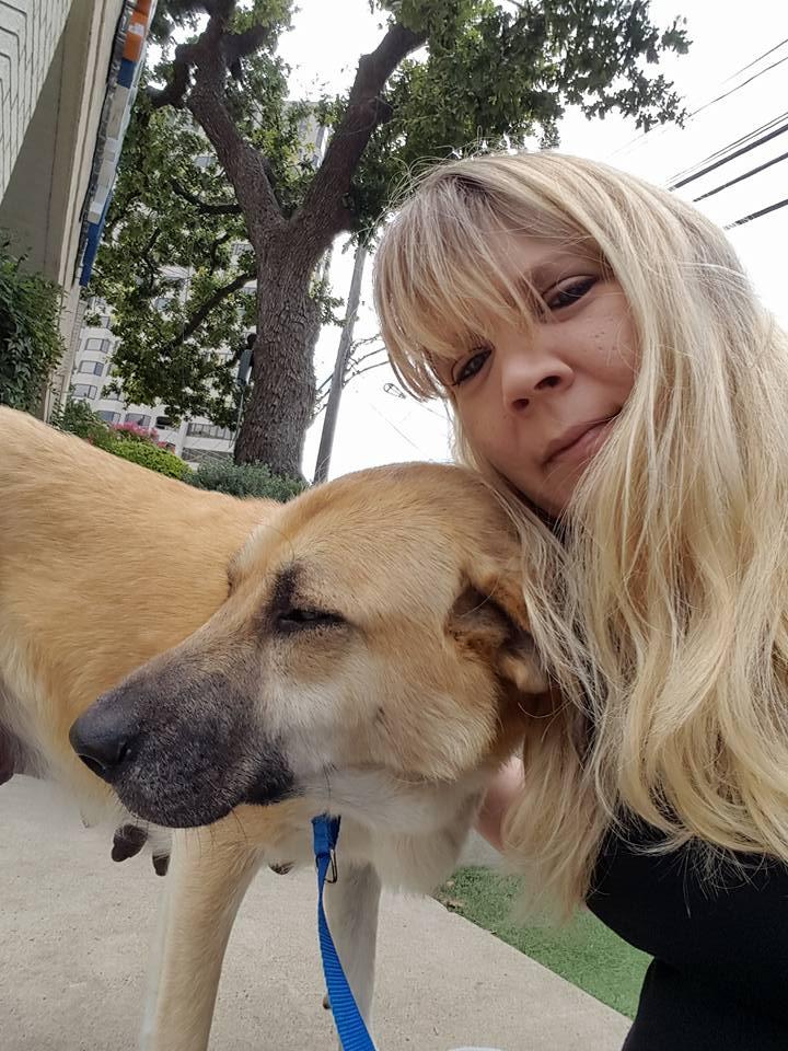 Perra fue abandonada con su cachorro muerto