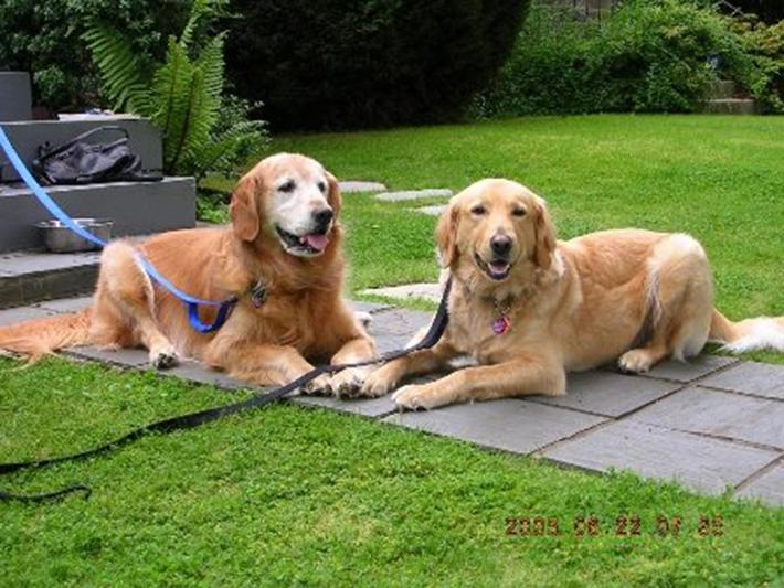 Alfie y su hermana