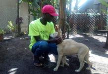 Construyó un santuario para perros sin hogar