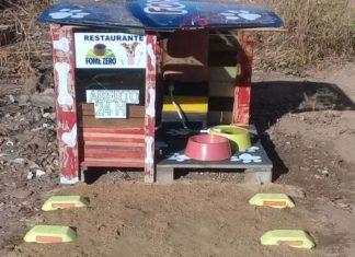 Hombre construyó un restaurante para perros