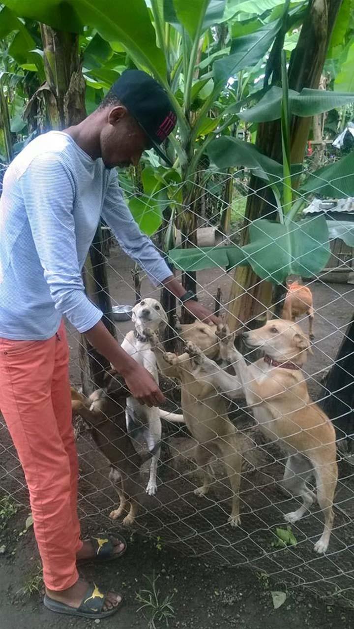 Ismael y sus perros rescatados