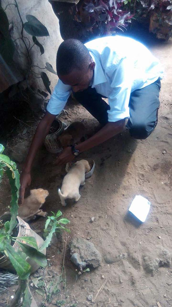 Joven rescata perros en Tanzania