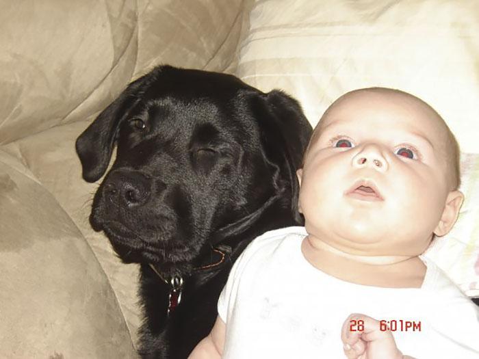 Le dijo a su hermana que no tuviera un perro