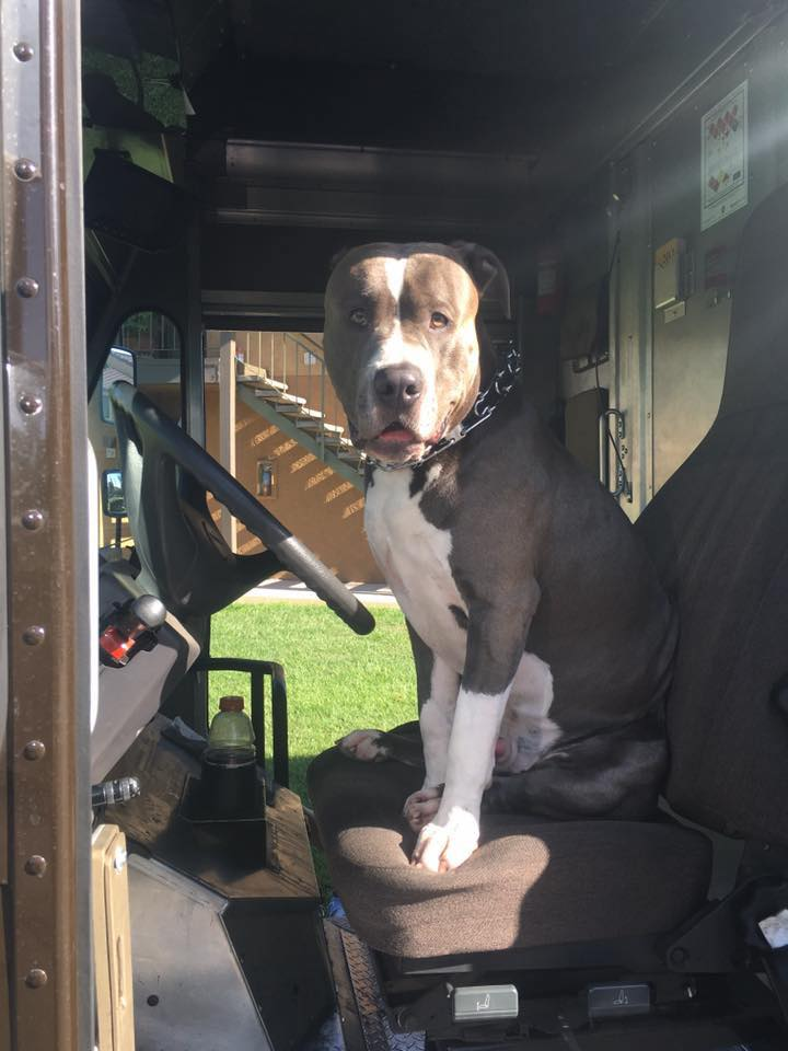 Leo en el camión