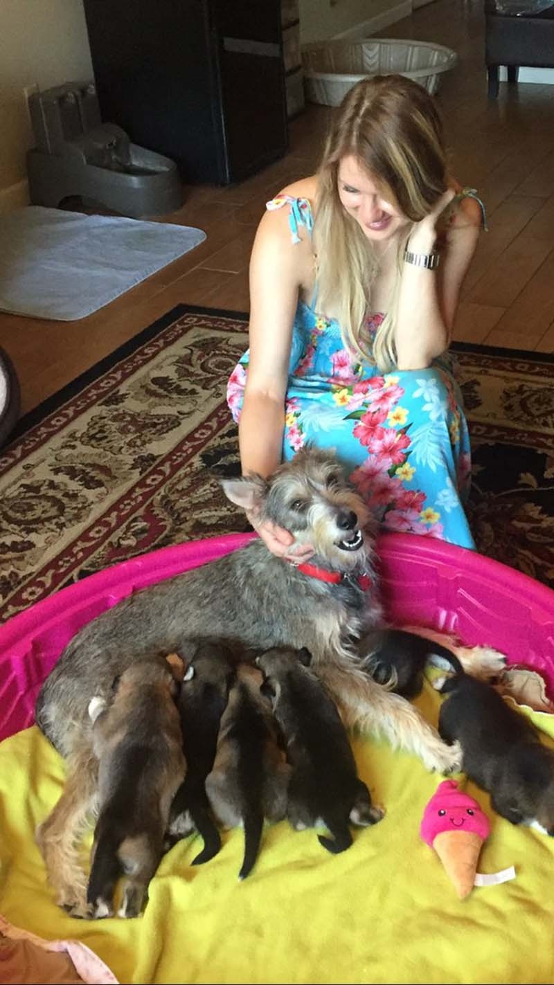 Madre y cachorros rescatados