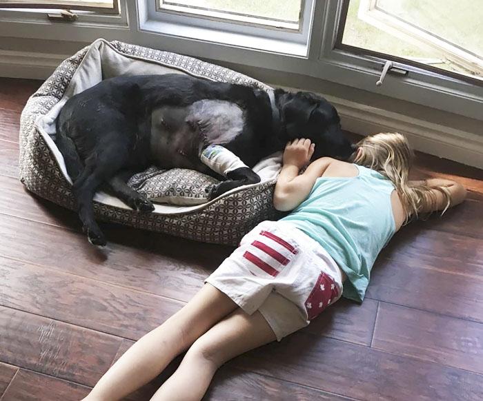 Niña y perro mejores amigos
